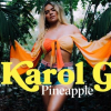 "Vevo & Karol G Releases A Live Performance Of ""Pineapple"""